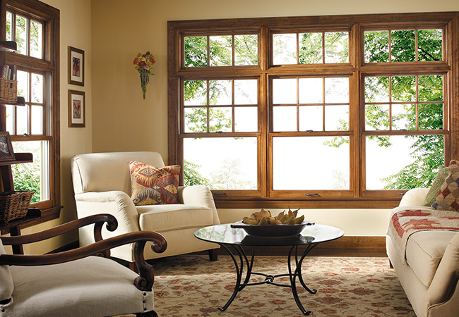 Wood trimmed windows in a living room with a tree-lined view outside