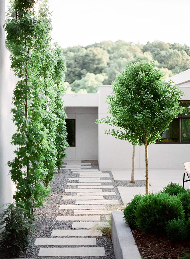 Outdoor spaces modern walkway small trees gravel around cement tiles