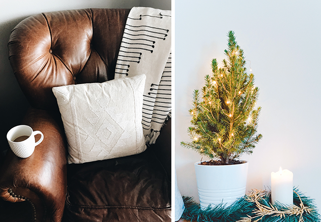 Split image of a brown leather couch with a white fabric pillow and a small, simply lit pine tree in a planter.