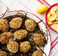 baked-clams-archive.jpg