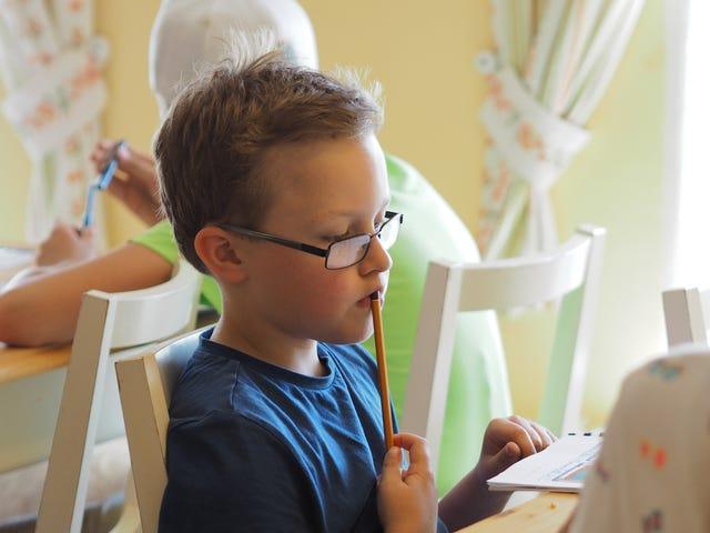 Anglický tábor Kids Camp pro děti