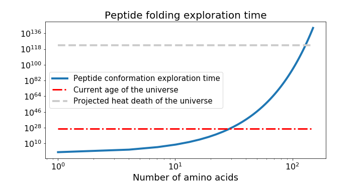 Graph of protein folding time to explore peptide structure exploration time