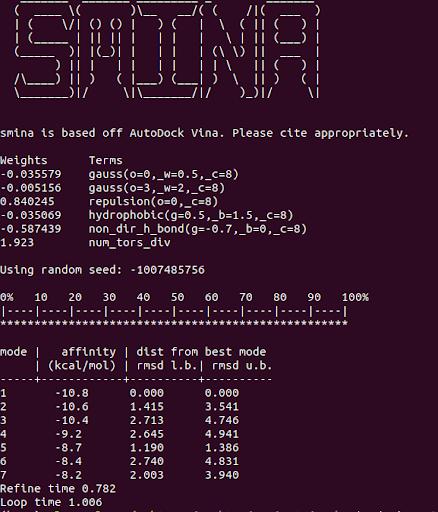 SMINA output of code