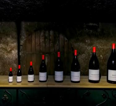 Wine Bottle Sizes Guide