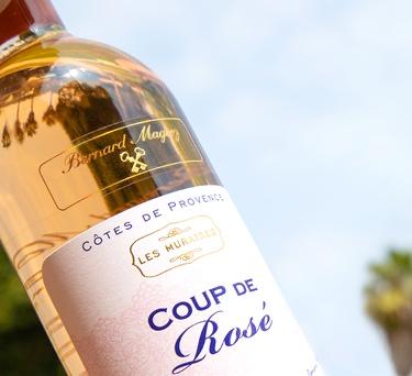 A Comprehensive Guide to Rosé Wine