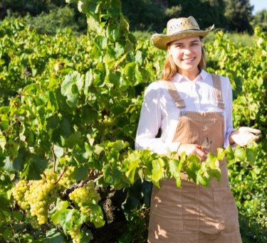 Feature on Female Winemakers
