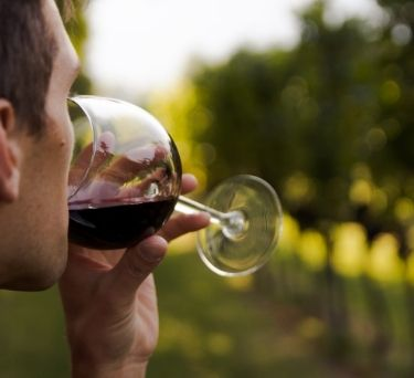 Why Does Red Wine Make You Sleepy?