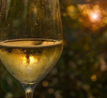 Pinot Grigio/Gris
