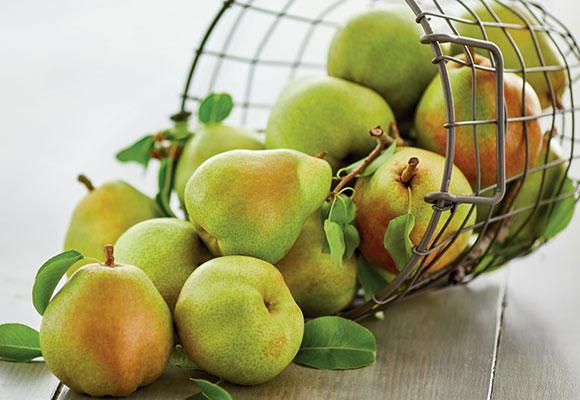 Royal-Riviera-Pears_Feature.jpg