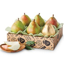 Pears & Fruit