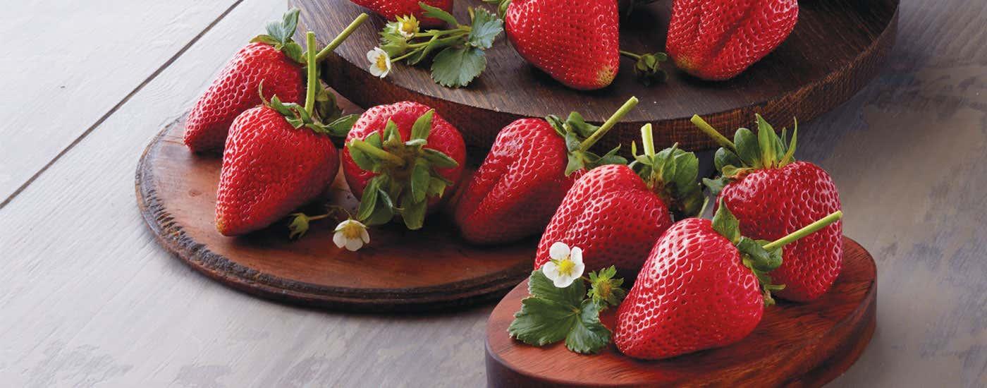 210408-StrawberriesHero_1400x550.jpg