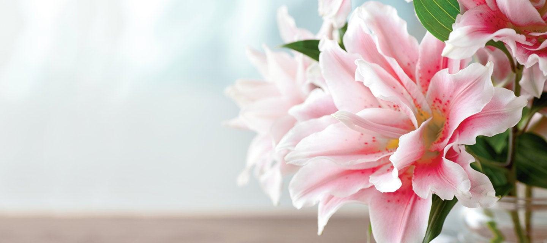 181220-Floral.jpg