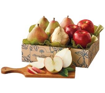 m_190307-GetWell-Fruit-_m.jpg