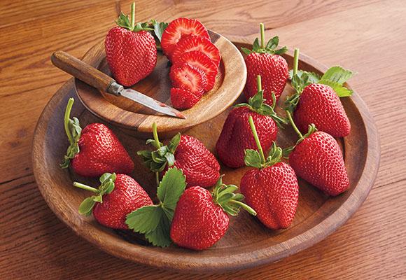 Strawberries-Feature580x400.jpg