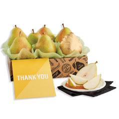 210416-ThankYou-Pears-Siloed.jpg