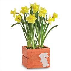 200218-Easter-SBC_Flowers.jpg