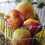 200918-FruitCombos-thumb.jpg