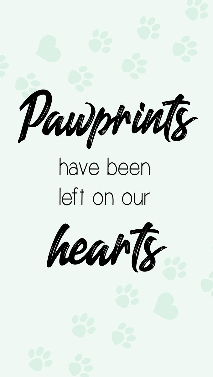 Pawprints Have Been Left On Our Hearts