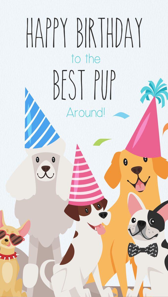 Happy Birthday To The Best Pup