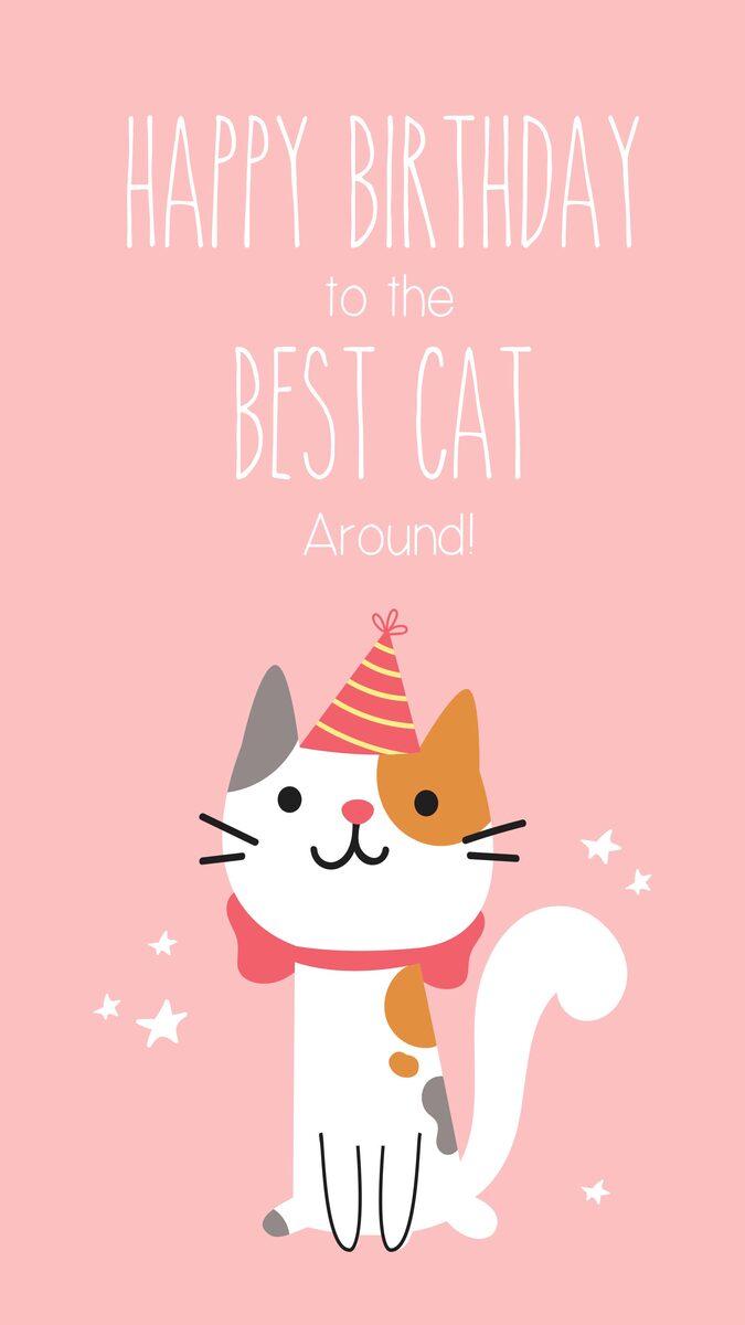 Happy Birthday To The Best Cat