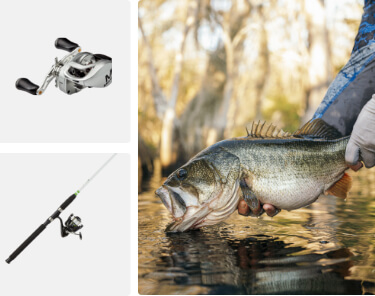 up to 20% off fishing