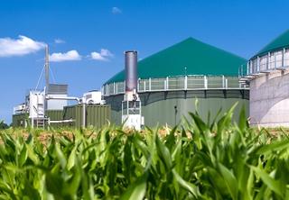 Our renewable mix BioEnergy