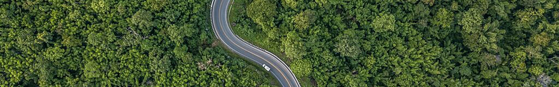 Road to carbon neutral. Winding road through forest.
