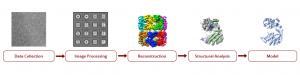 spc-relion-diagram-300x75.png