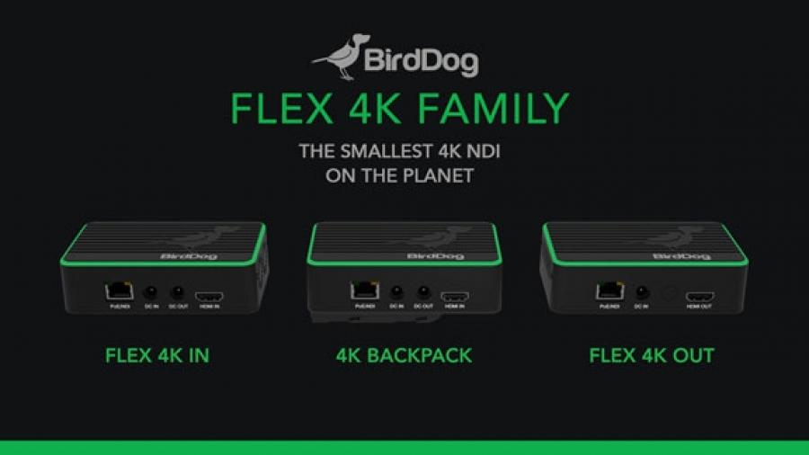 birddog-flex-4k.jpg