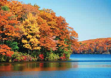 A lake surrounded by fall-colored trees near Mount Ascutney Resort in Brownsville, VT