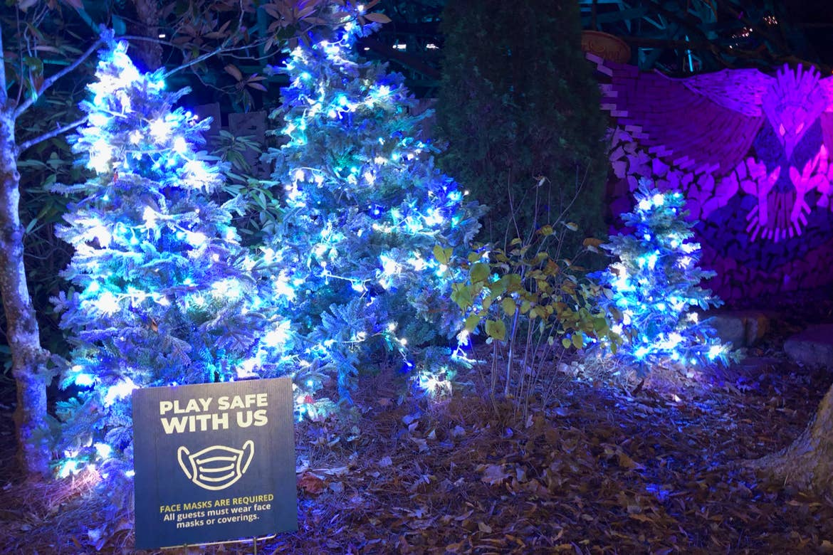 LED Christmas lights on pine trees at 'Dollywood' next to a safety sign that reads, 'Play Safe with Us.'