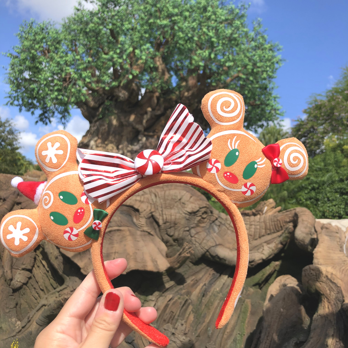 Author, Kelly Nelson, holds a pair of gingerbread Mickey and Minnie Mouse Ears with a large red and white striped bow centered with a peppermint candy in front of the Tree of Life at Disney's Animal Kingdom Theme Park at Walt Disney World® Resort.