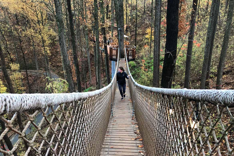 Featured Contributor, Jennifer C. Harmon, walks a suspended rope bridge amongst the trees.
