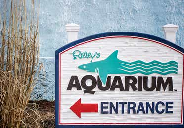 Ripley's sign pointing to the entrance of the aquarium