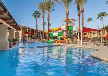 View of pool and two waterslides surrounded by palm trees at Scottsdale Resort.