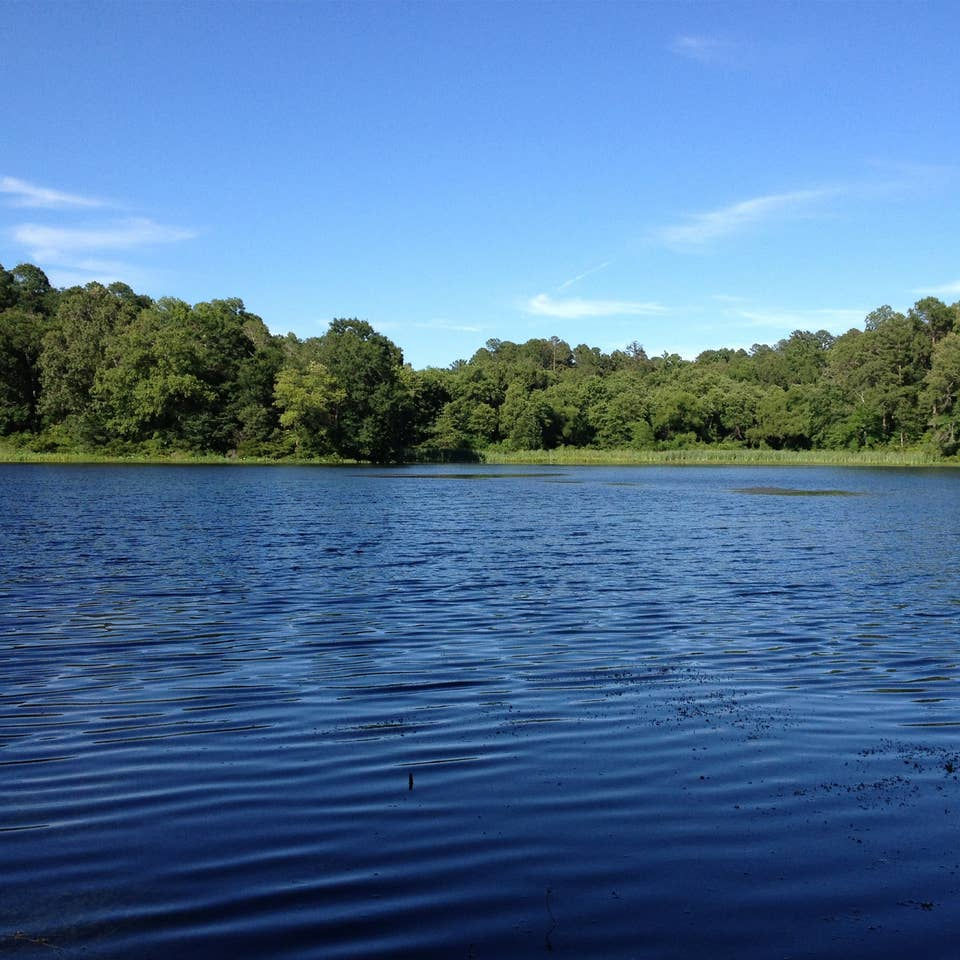 Lake Palestine near Villages Resort in Flint, Texas.