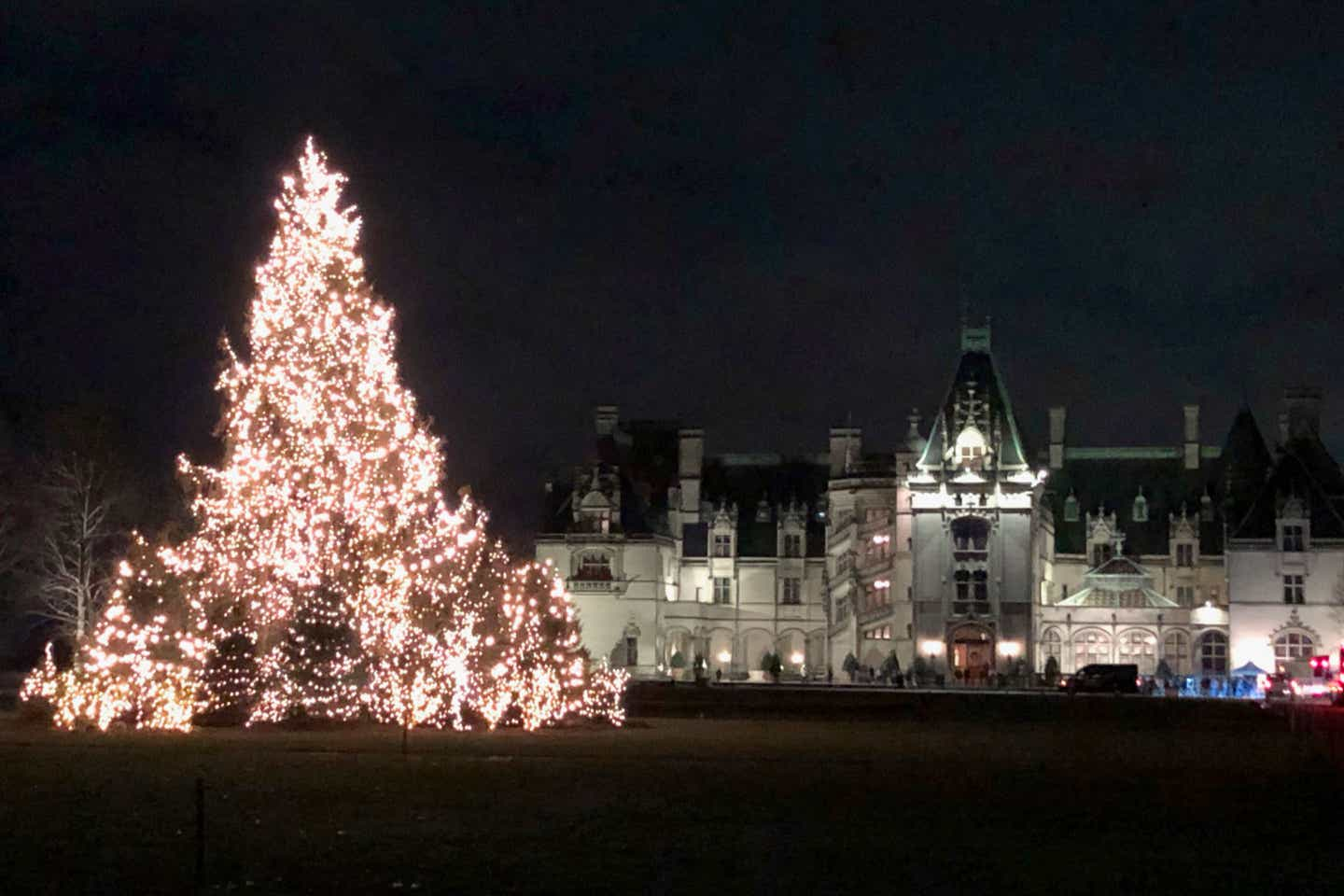 The exterior of the Biltmore Estate at night with a large, string light covered Christmas tree on the front lawn.