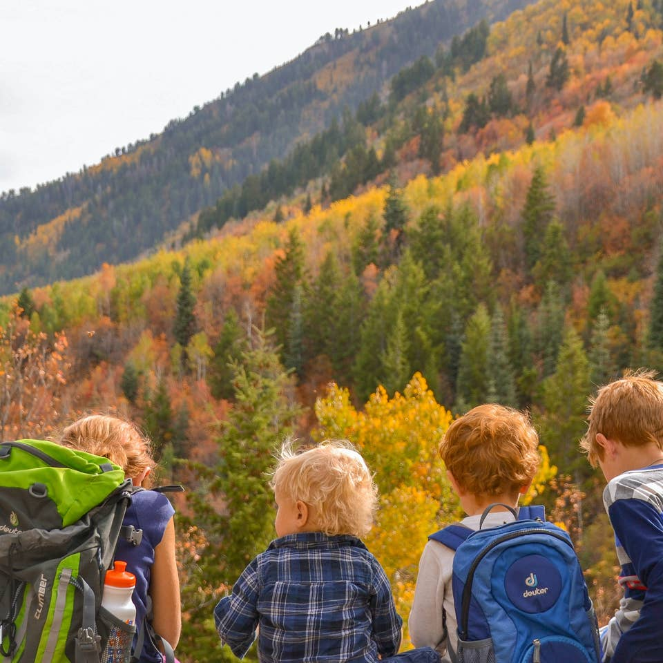 Jessica's kids sitting in front of gorgeous fall foliage and mountains in the background.
