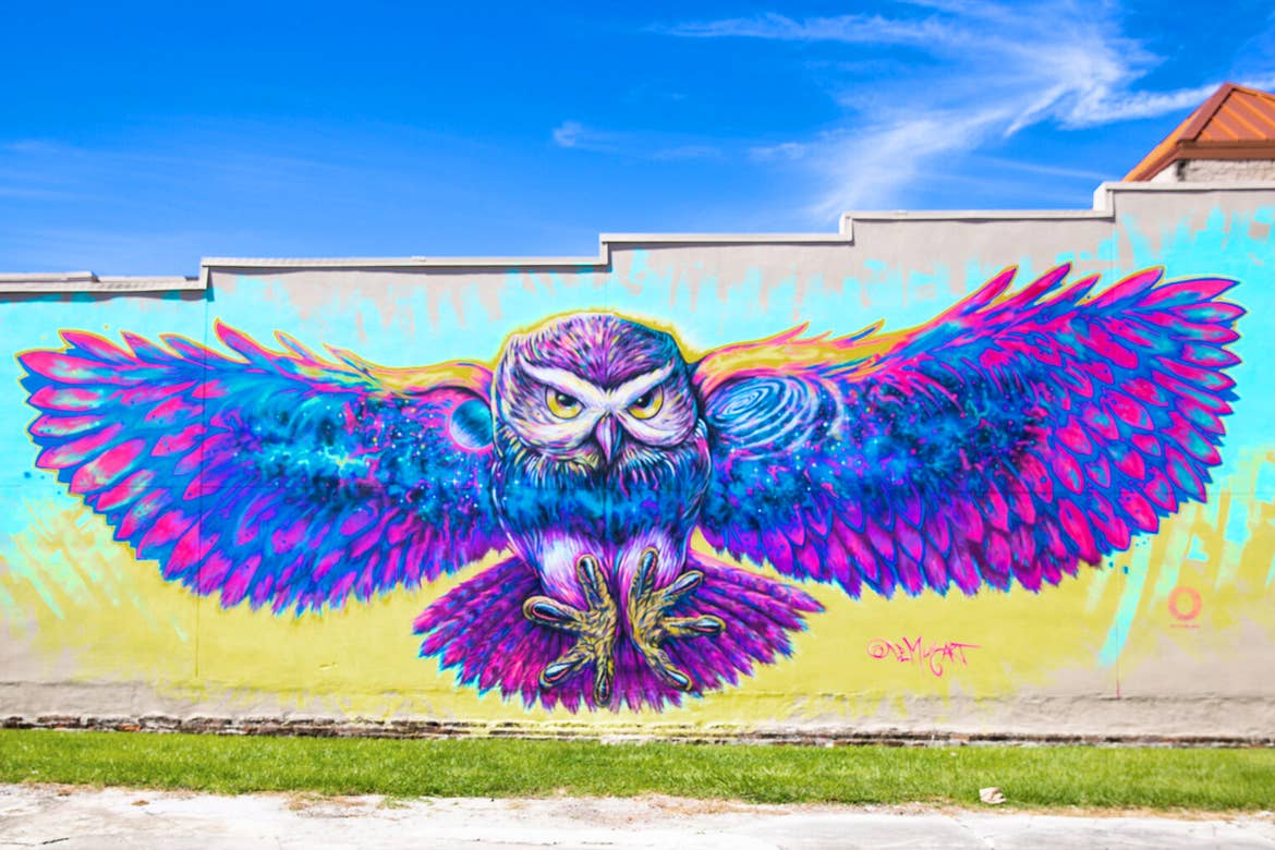 A painted wall mural in Downtown Kissimmee featuring a colorful owl by artist, German Lemus