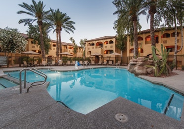 Pool surrounded by cacti, palm trees and resort buildings at Scottsdale Resort in Arizona