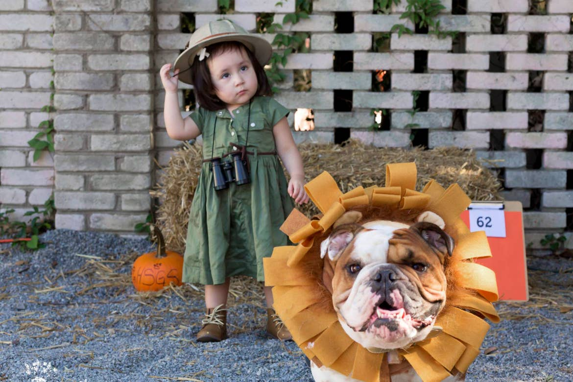 A young girl and her dog are dressed for a safari.