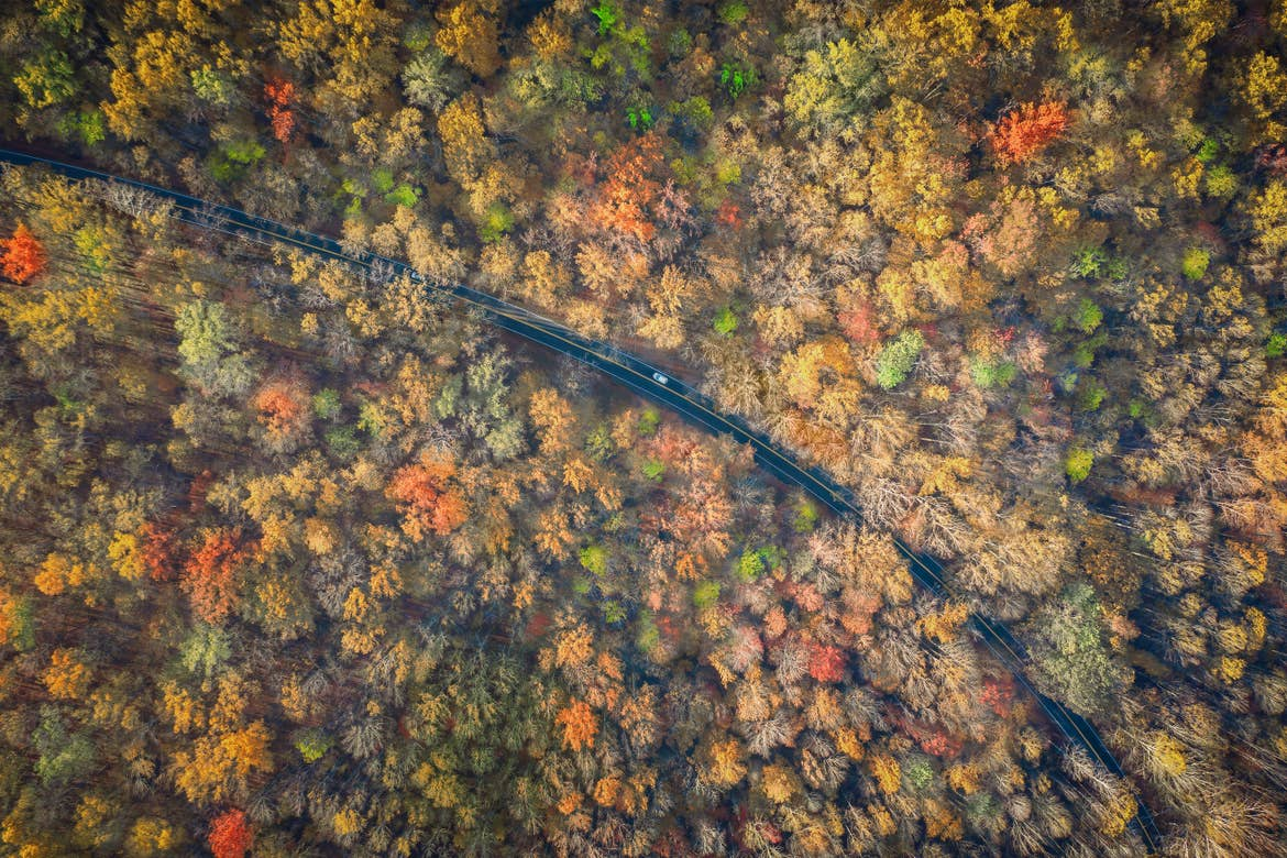 An aerial view of the Newfound Gap Road in the fall foliage