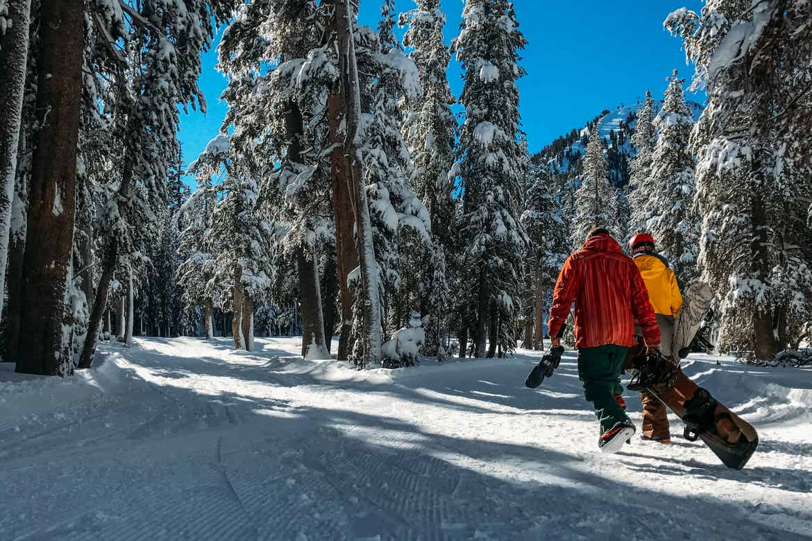 Two men walk a snow-covered trail in a pine tree forest wearing snowboarding gear and carrying snowboards.