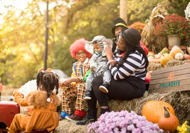 Family in Halloween costumes sitting around pumpkins and other fall decorations.
