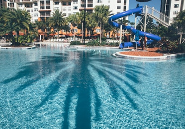Pool with shadow of palm tree and water slide in background in River Island at Orange Lake Resort near Orlando, Florida