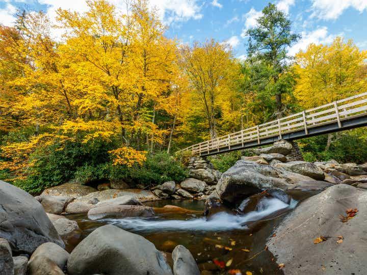 A bridge in Smoky Mountain National Park