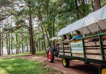Family on outdoor wagon ride at Villages Resort in Flint, Texas.