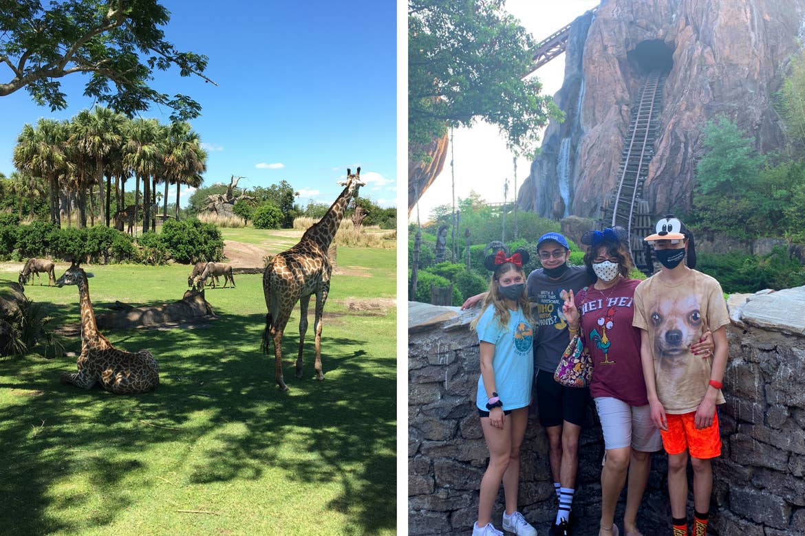 Left: Giraffes take a rest in the shade during the Kilimanjaro Safari in Disney's Animal Kingdom. Right: A woman (middle-right) wears Minnie Ears with two boys (left and right) and a girl (far-left) in front of Expedition Everest.