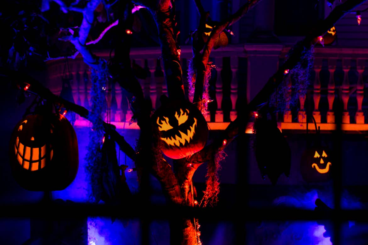 A tree with hanging Jack O' Lanterns on it's branches.