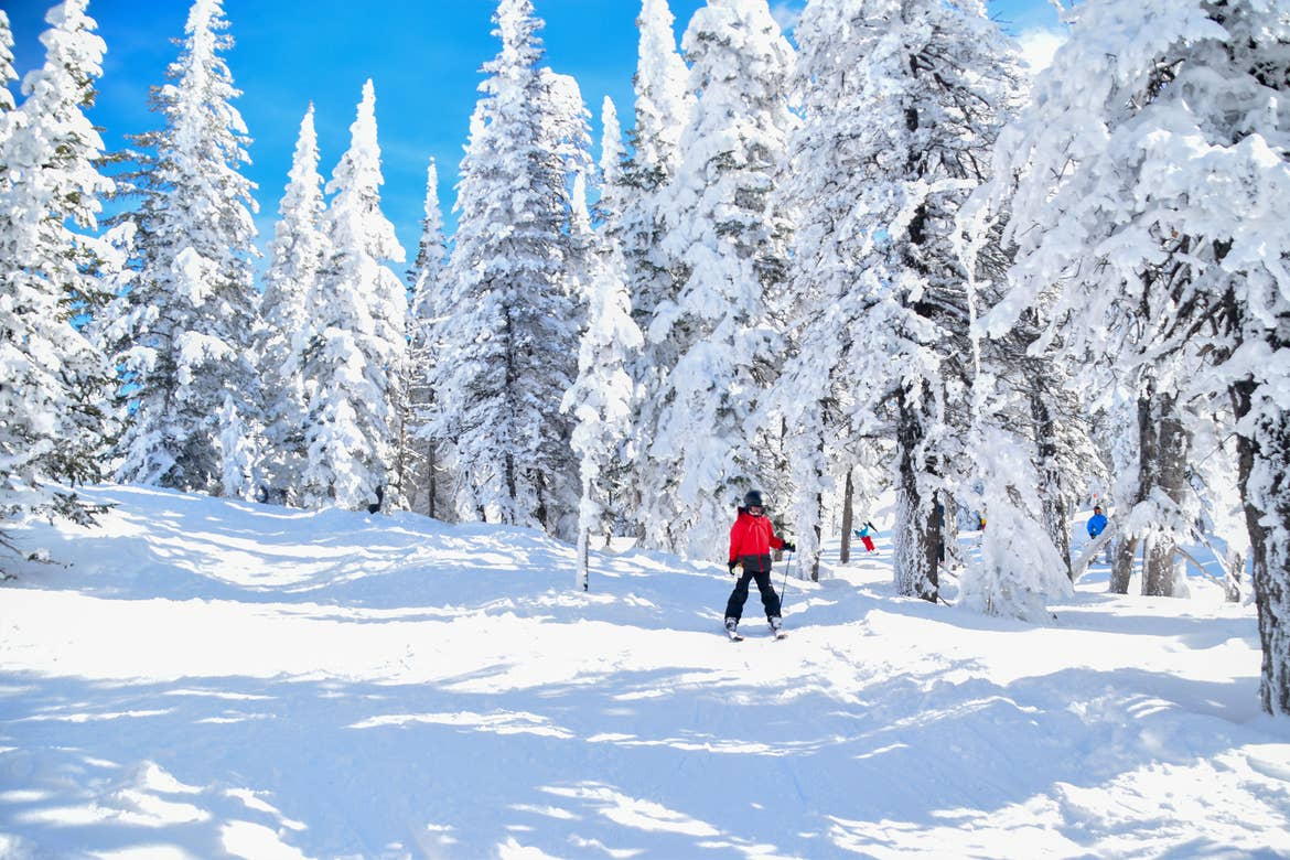 Contributor, Jessica Averett's son clad in winter and skiing gear ascends down the slopes with snow-covered pine trees.